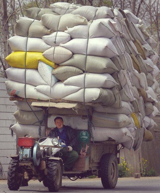 tractor-sacks-cigg_2487087k