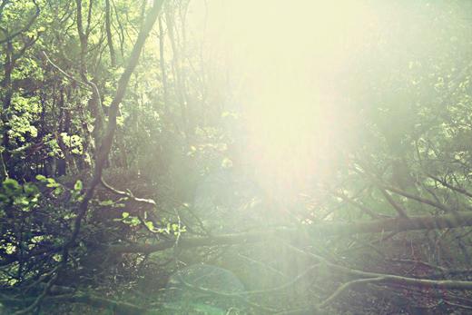 Glendalough_green_Zoetica Ebb_Small_09