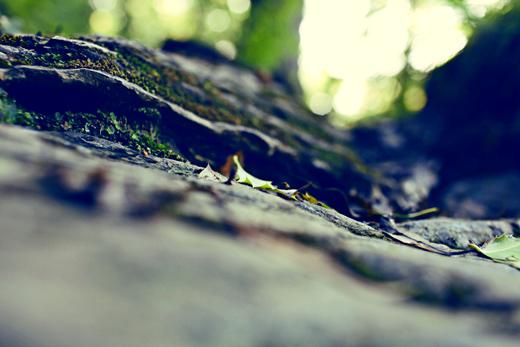 Glendalough_green_Zoetica Ebb_Small_20