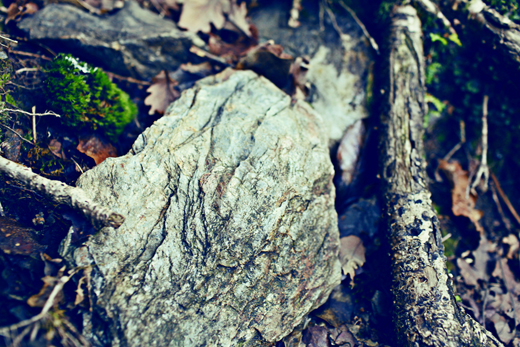 Glendalough_green_Zoetica Ebb_Small_21