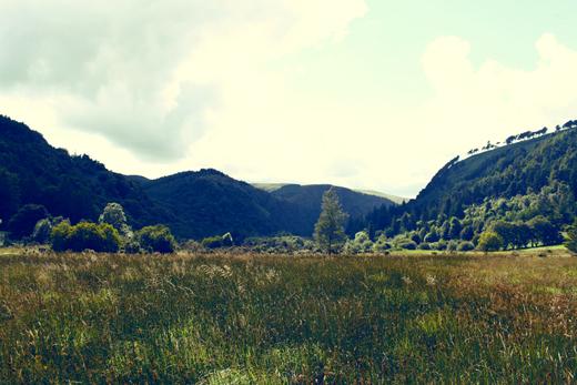 Glendalough_green_Zoetica Ebb_Small_28